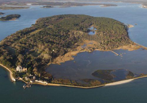 Brownsea Island