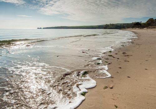 beach161studlandbeach